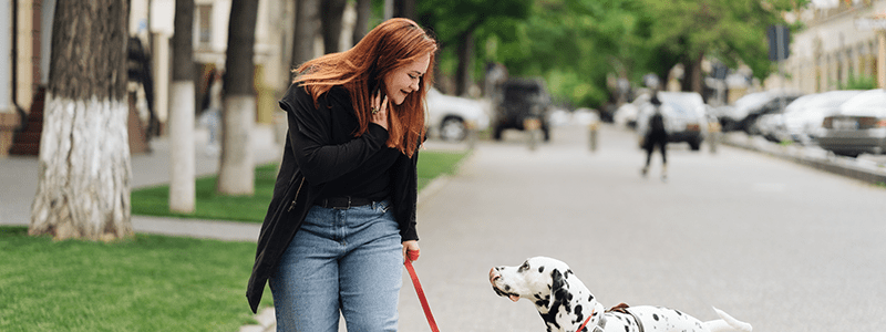 Beautiful Woman Walking With Dog